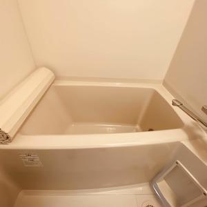 ミルーナヒルズアイル両国(4階,)の浴室・お風呂
