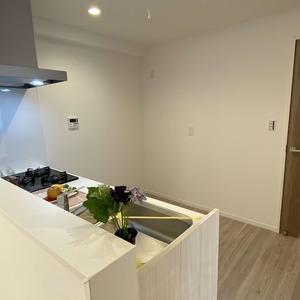 メゾンドール錦糸町ツイン(2階,4499万円)のキッチン