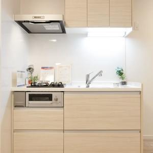 プチモンド上野(2階,2499万円)のキッチン