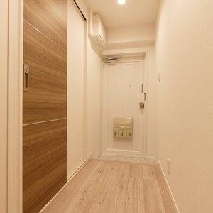ビッグ武蔵野池袋(2階,)のお部屋の玄関