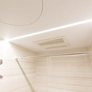 ビッグ武蔵野池袋(2階,)の浴室・お風呂