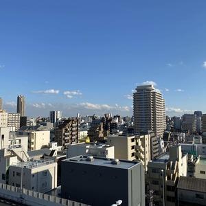 ハーモニーレジデンス錦糸町 #001(10階,4199万円)のお部屋からの眺望