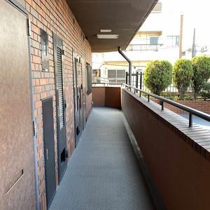サンメゾン中野(3階,4590万円)のフロア廊下(エレベーター降りてからお部屋まで)