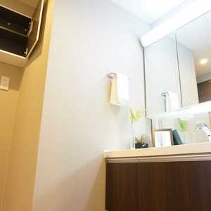 ライオンズマンション箱崎町(4階,5680万円)の化粧室・脱衣所・洗面室