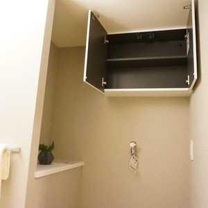 グラーサ東京イースト(3階,)の化粧室・脱衣所・洗面室