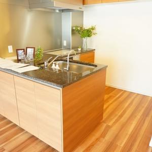 オープンレジデンス御殿山(2階,)のキッチン