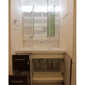ドミール世田谷(2階,)の化粧室・脱衣所・洗面室