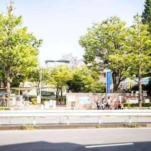 セレニティ参宮橋のその他周辺施設