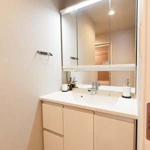 目白が丘マンション(5階,4980万円)の化粧室・脱衣所・洗面室