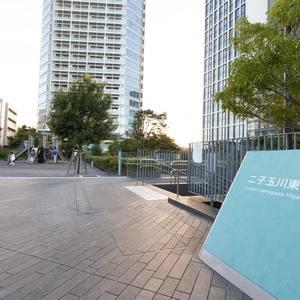 上野毛南パークホームズのその他周辺施設