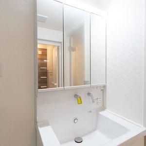 二子玉川ロイヤルマンション(1階,4580万円)の化粧室・脱衣所・洗面室