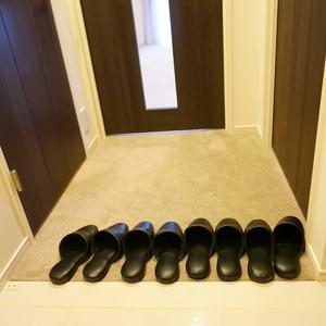 サンクタス銀座(2階,8800万円)のお部屋の玄関