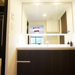 サンクタス銀座(2階,8800万円)の化粧室・脱衣所・洗面室
