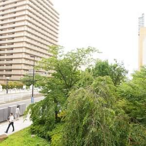 サンクタス銀座(2階,8800万円)のお部屋からの眺望