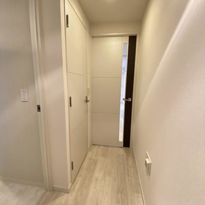 ランドステージ墨田ブライトスクエア(1階,)のお部屋の廊下