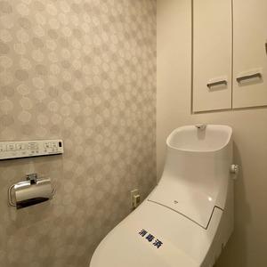 ランドステージ墨田ブライトスクエア(1階,)のトイレ